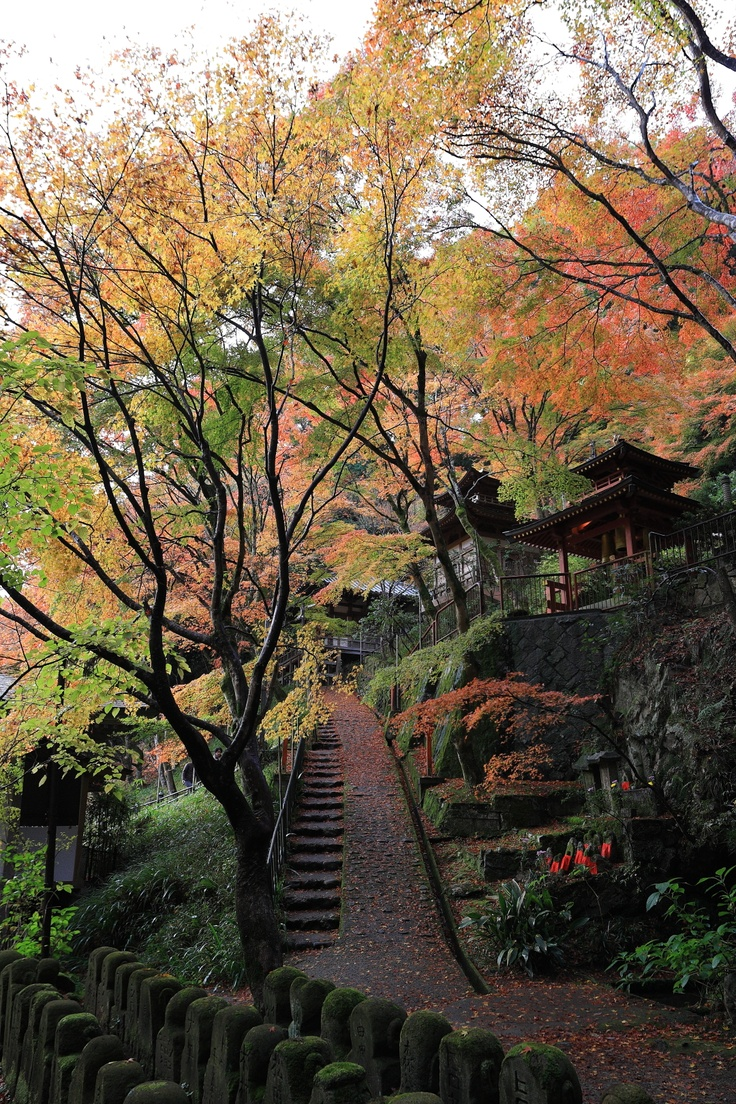 1005 best Photo images on Pinterest | Handicraft, Paisajes and Tokyo