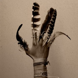 flyCostumes, Photos Ideas, Hands, Fingers, Art, Inspiration Pictures, Birds, Bohemian, Feathers Nails