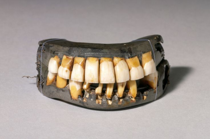 "No, George Washington did not have ""wooden"" teeth."