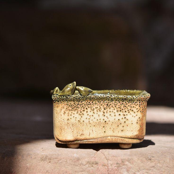 """Bonsai/ Kusamono miska Hnízdění - Natura 57 Kameninová, ručně modelovaná Bonsai/ kusamono miskana nožičkách z rodinky """"Natura""""je určena k osázení, k dekoraci. Glazováno i uvnitř:) Jsou vhodné do interiéru i exteriéru. Kamenině mráz nevadí. Bonsajová miska je nedílnou součástí kompozice bonsaje.Miska musí zcela nenuceně a přirozeně podtrhovat přirozený vzhled a..."""
