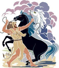 8. Le Cavalle di Diomede