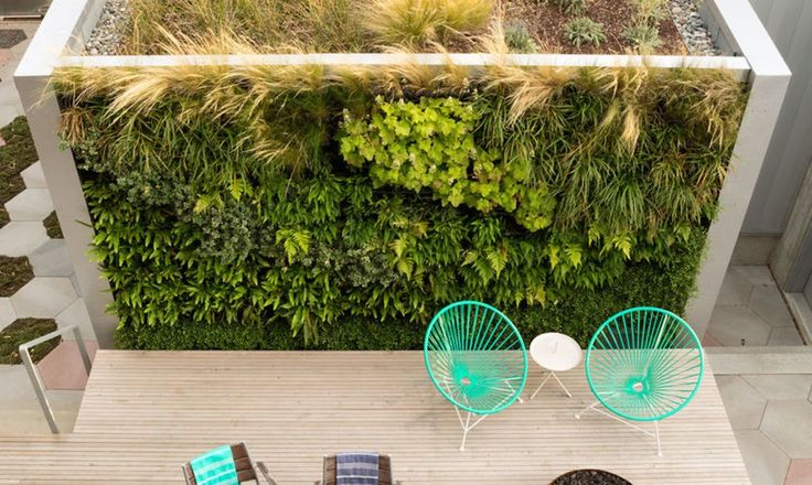 The firm's success can be seen in the outdoor patio, built like an extension of the indoor living space, that's partly bookended by a lush living wall.