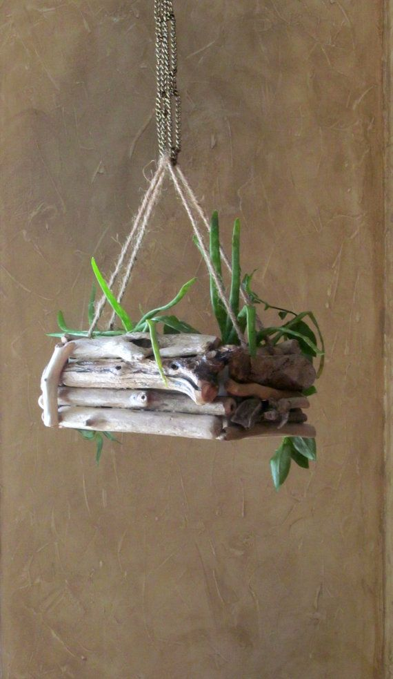 Driftwood Hanging Planter - I'll use chain for the hanging part so it'll last longer through weathering ---