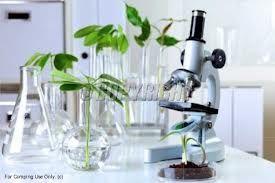 Se Utiliza La Tecnologia Para Dar Vida A Plantas Que Nos Sirven Ahora Y Nos Servirán En Un Futuro