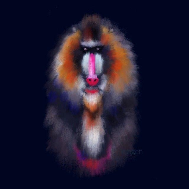 Вторая обезьяна в моей копилке! Доброй ночи) #Инзижен #Inzigen #print #принт #обезьяна #animal #animals #животные #ярисую #яркий #арт #art #artist #myart #procreate #procreateapp #ipadart #ipaddraw #create #creator #topcreator #illustrator #illustration #цветной #творчество #хобби #бабуин