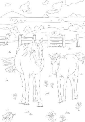 pferde ausmalbilder 774 malvorlage alle ausmalbilder kostenlos, pferde ausmalbilder zum