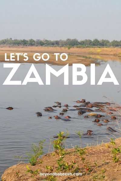 Curious about what it is like to travel to Zambia? Check out an overview of what it is like to travel in this amazing African country and see a list of all my posts about the country here! #zambia #travel #africa #africatravel #safari