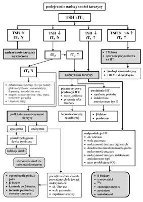 Postępy w laboratoryjnej diagnostyce czynności tarczycy • Postępy Nauk Medycznych 2/2008 • Czytelnia Medyczna BORGIS