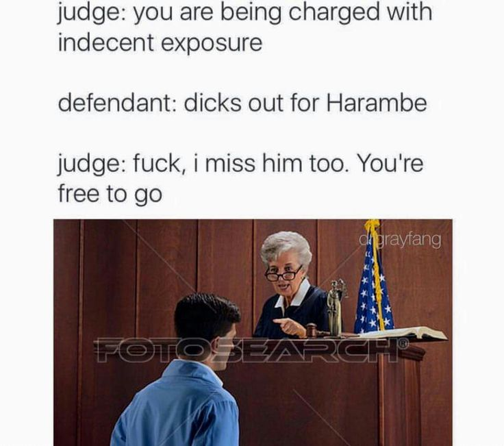 I don't know why but I'm obsessed with these harambe memes