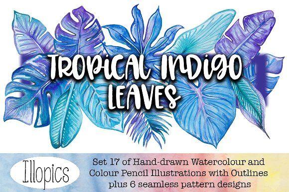 Tropical Indigo Leaves by Illopics on @creativemarket