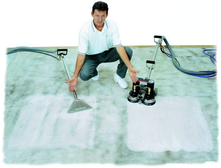 Find This Pin And More On Carpet Cleaning Adelaide