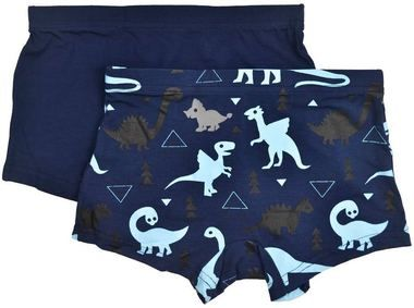 Your little ones will love their new underwear set! Including 2 pairs of boxers in great colours and fun designs, this set includes a blue pair with dinosours and a plain navy blue pair.