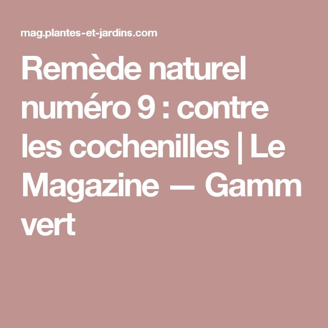 Lutter Contre Les Cochenilles Naturellement #12: Remède Naturel Numéro 9 : Contre Les Cochenilles   Le Magazine U2014 Gamm Vert