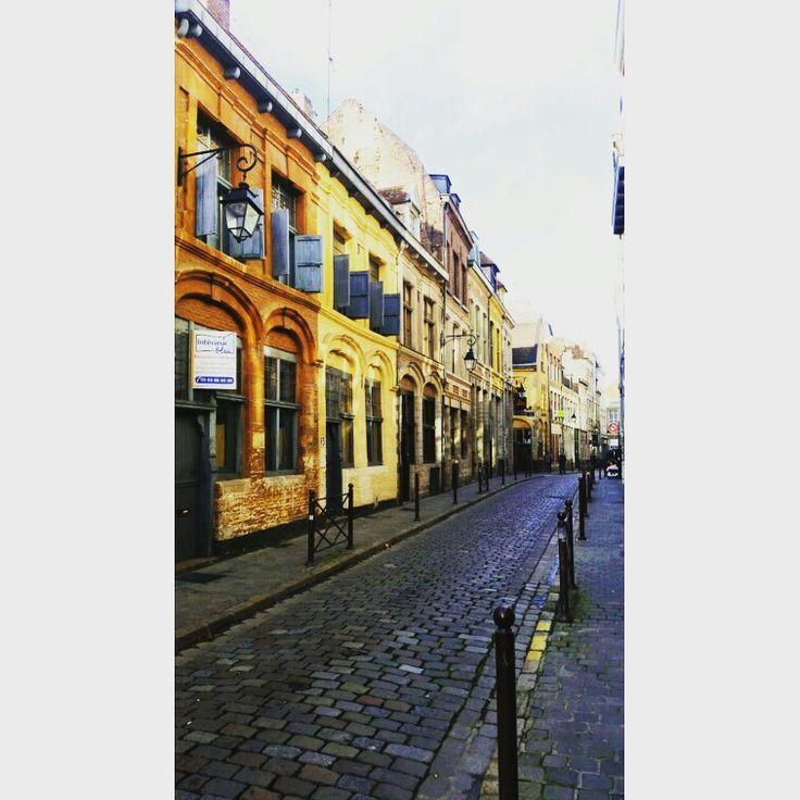 98 best frankrijk lille images on pinterest | travel, frances o
