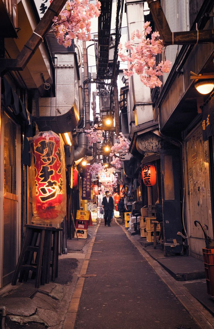 Tokyo Alley, Shinjuku, Japan on Sunsurfer, a visual blog about travel, love & the beauty of our world.