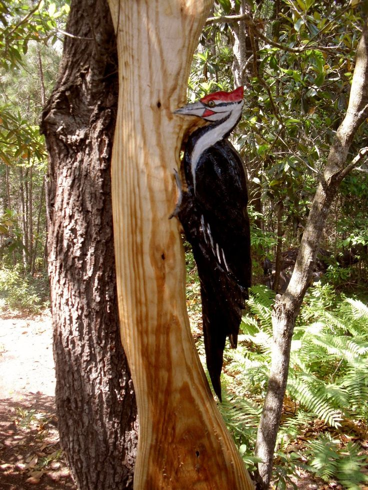 Pileated woodpecker in tree ft chainsaw carved wild bird