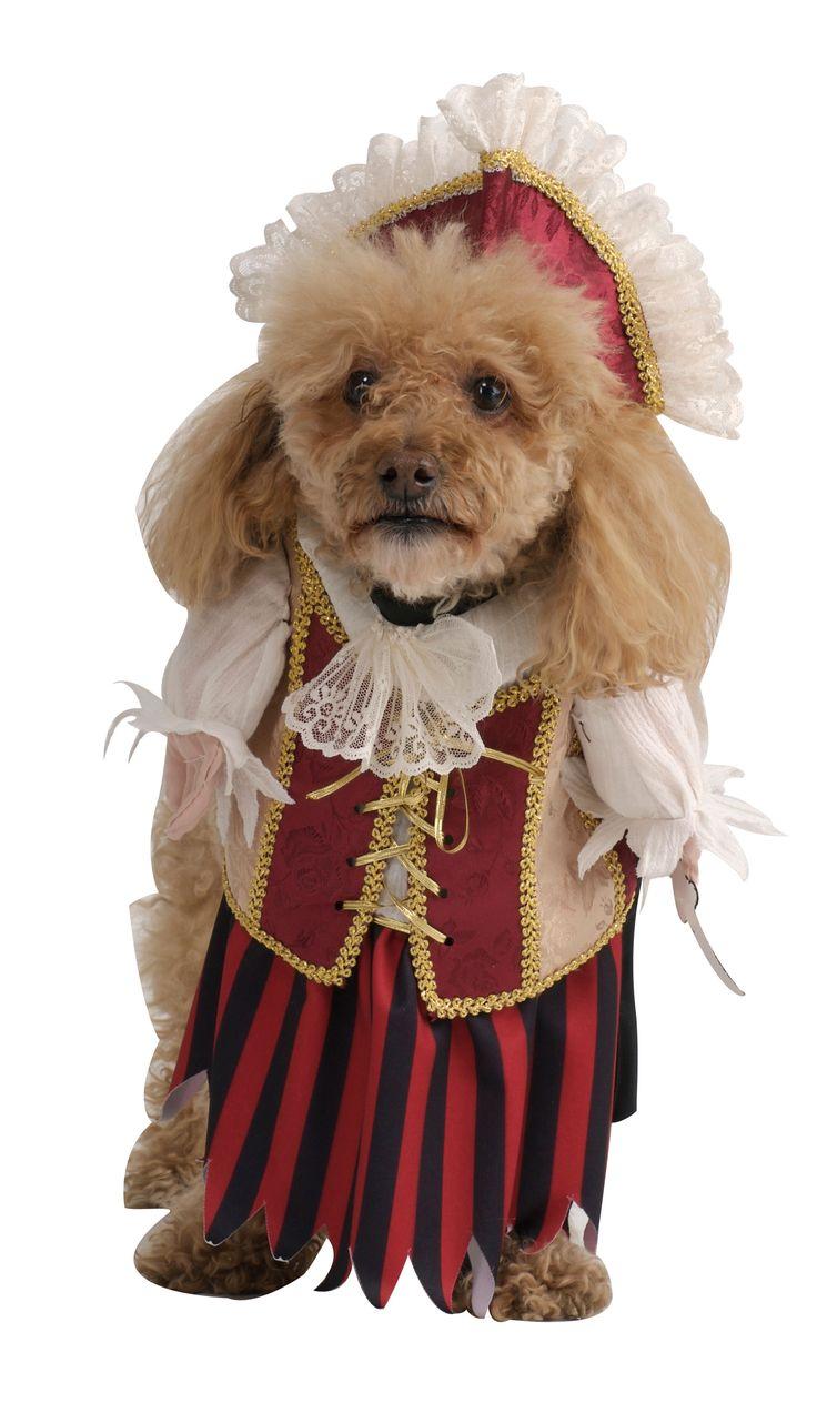 Pirate Pet Costume-Female by Rubie's Costume Co