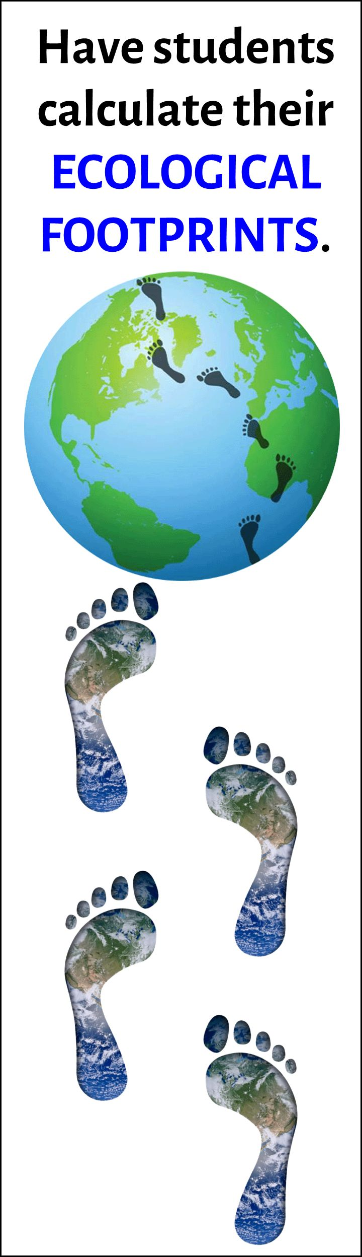 This great activity has students using an online ecological footprint generator to help them analyze how their lifestyle choices have an implact on their ecological footprint.  In this activity they analyze their own footprint, the footprint of the most sustainable human and the footprint of the least sustainable human.  This activity leads to a really rich discussion of ecological issues.  Since this is a computer lab activity, it also makes for a great sub plan.