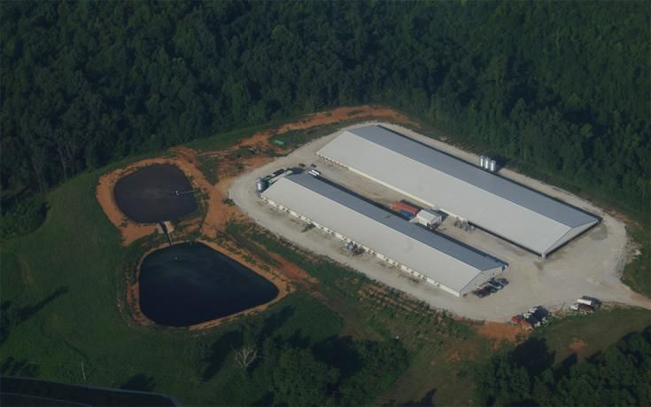 """BUFFALO RIVER HOG CAFO THREATENS AMERICA'S FIRST NATIONAL RIVER C&H Hog Farms produces millions of gallons of animal waste deep in the """"Jewel of Arkansas"""" BY JONATHAN HAHN 