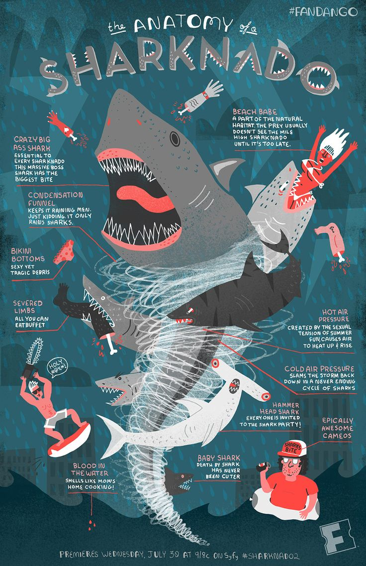 Infographic: The Anatomy of a Sharknado | Fandango |  by Rachel Ignotofsky   #Sharknado