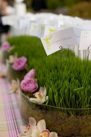 wheatgrass & flowers for placecard display... Like it in the glass surround
