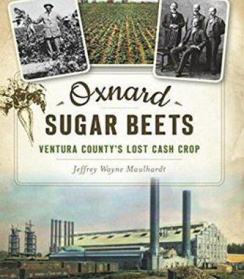 Oxnard Sugar Beets: Ventura County's Lost Cash Crop PDF