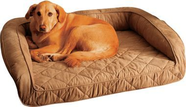 Buddy Beds Memory Foam Bolster Dog Bed (I like the idea of memory foam, especially for elderly dogs who may be stiff. dcm)