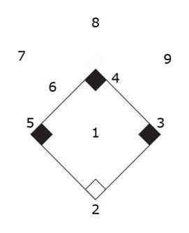softball position numbers in case you need it