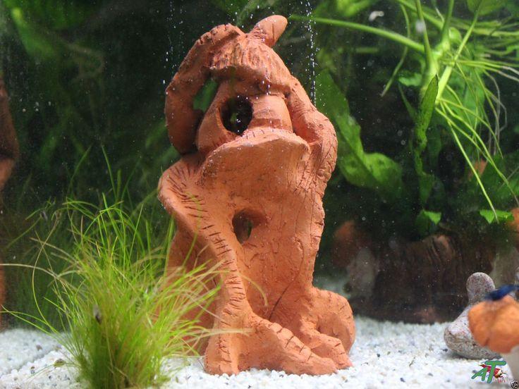 Ber ideen zu aquarium deko auf pinterest aquarium fische aquarien und garnelen aquarium - Nano aquarium deko ...