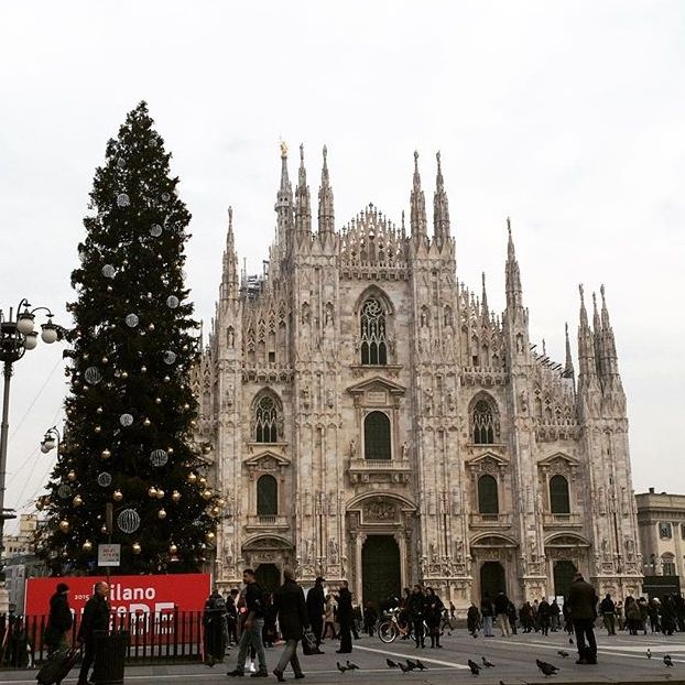 L'albero di Natale di Piazza Duomo #Milano