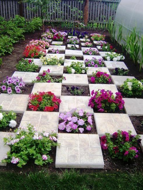 Malerische und farbenfrohe Petunien schaffen wunderschöne Mittelstücke für die Gartengestaltung