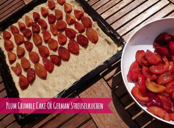 Plum crumble cake german streuselkuchen streuselkuchen mit pflaumen