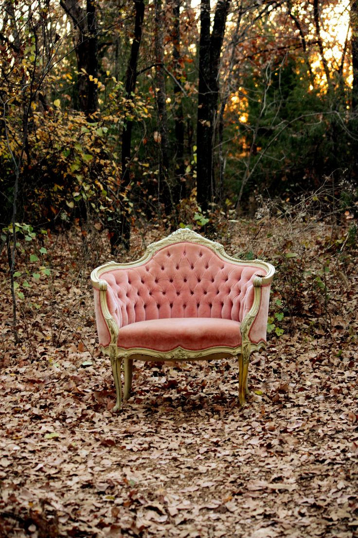 pink velvet french chair and a half!  Please bing it inside before it rains.