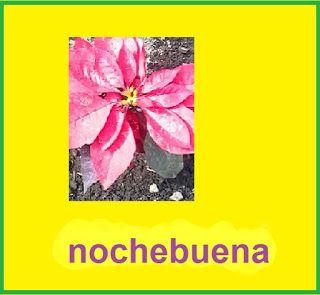 Juan Antonio Ramirez pianista: Nochebuenaflor mexicana      Lanoche buenaes un...