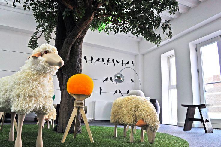 Coastal Housing: Sheep seat
