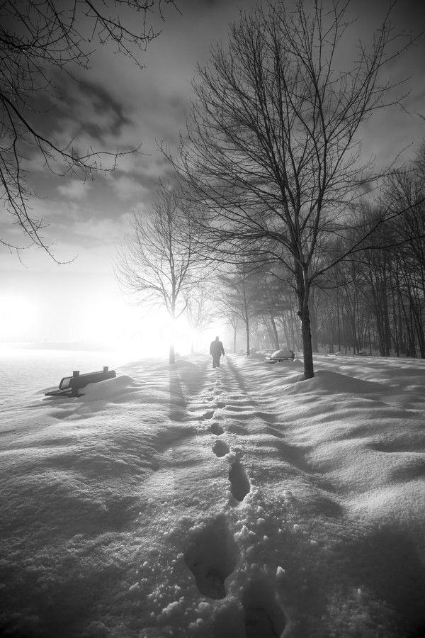 Gorgeous Photo. Trudge by Alfred Hess
