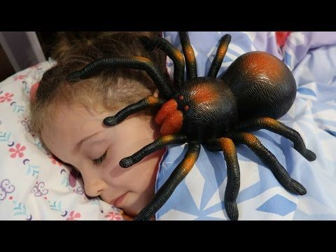 Giant Spider Attacks Girl Sleeping Compilation - MaddaKenz Kids Toy Review Channel Play Show Vlog - YouTube