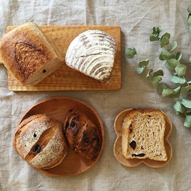 キビヤベーカリーさんで買ったパン達 * 天然酵母のパンでどれもずっしり! あんずの食パン、黒みつカンパーニュ、 レーズンパンなどなど〜…