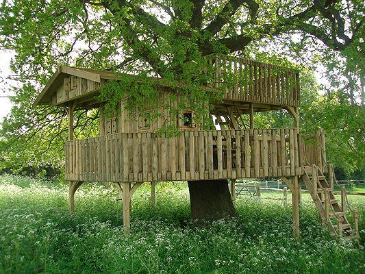 c49a3e794dbd0b9583b0090f323fdc18 kids tree forts rope bridge 108 best treehouses images on pinterest,Tree House Plans Uk