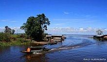 Danau Semayang, Kabupaten Kutai Kartanegara, Kalimantan Timur, Indonesia