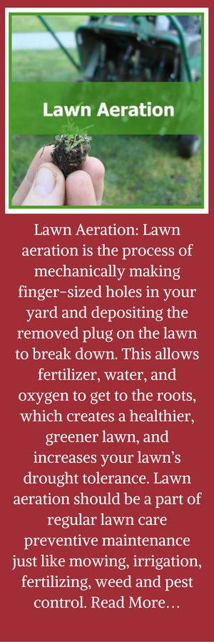Lawn Aeration: Lawn aeration is the process of mechanically making finger-sized holes in your yard and depositing the removed plug on the lawn to break down. This allows fertilizer, water, and oxygen to get to the roots, which creates a healthier, greener lawn, and increases your lawn's drought tolerance. Lawn aeration should be a part of regular lawn care preventive maintenance just like mowing, irrigation, fertilizing, weed and pest control. Read More…  http://surreylawns.co.uk