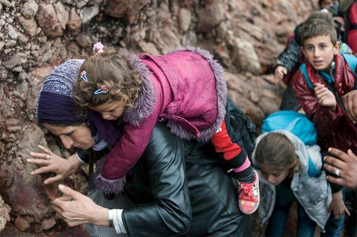 Reuters: Εννέα ελληνικές φωτογραφίες ανάμεσα στις καλύτερες για το 2015 – Έλληνες Δάσκαλοι και Νηπιαγωγοί