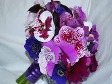 Orchids are perfect for achieving deep colours for this look