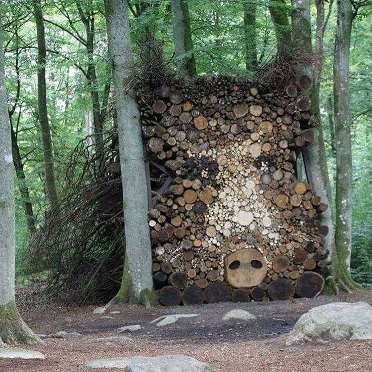 Если вы видите больше, чем просто наваленные деревья - то вам срочно пора на охоту��  #охота #кабан #охотанакабана #охотана #природа #природароссии #инстатаг #природапрекрасна #природамать #природарядом #природакрасота #лес #влесу #влесухорошо #звери #зверь #охота #охотанагуся #охота2017 #охотник #охотники #фото #foto #hunting #hunt http://misstagram.com/ipost/1554298686111301073/?code=BWR-muEhT3R