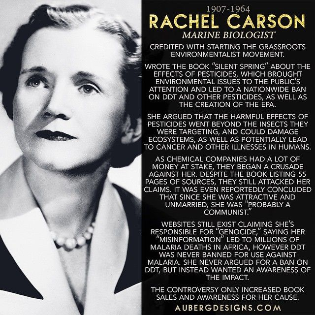 """Rachel Carson bravely faced the pesticide industry with her book """"Silent Spring."""" #WomeninSTEM #WomensHistoryMonth http://ift.tt/1Cq7dME"""