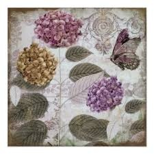 paarse hortensia - Google zoeken
