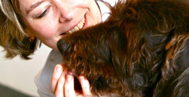 Op de allergiepoli onderzoeken en behandelen we honden met jeuk en huidproblemen. Niet voor even..maar zó dat uw hond de rest van zijn leven daar plez