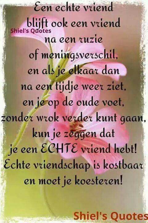 Citaten Over Vriendschap : Echte vriendschap citaten op pinterest