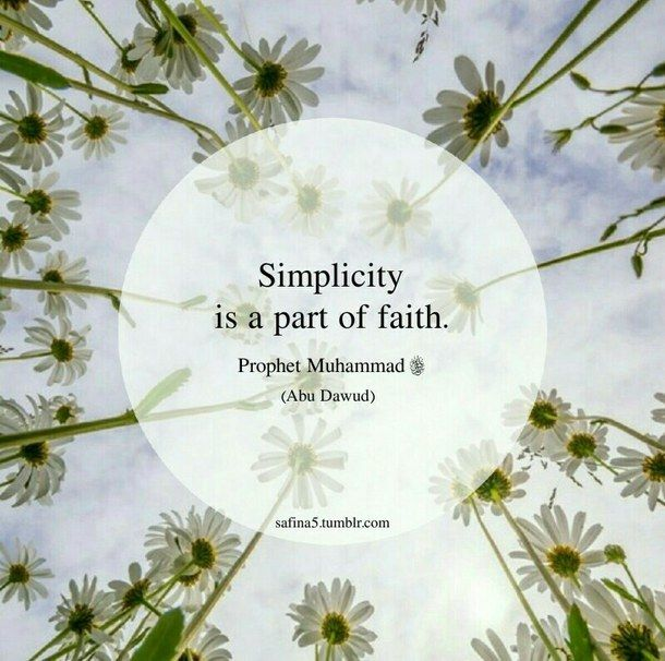Live the simple life.                                                                                                                                                                                 Mo
