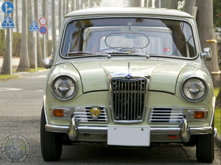 Absolutely beautiful #Frontendfriday Riley Elf from our friends in Japan.